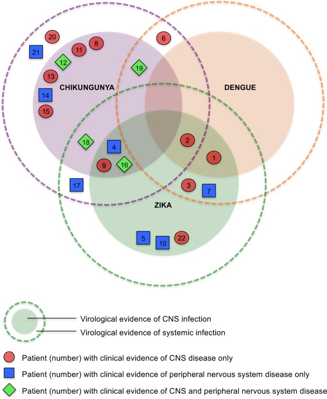 Venn diagram for 22 patients showing virological evidence of CNS or systemic infection with Zika, chikungunya and/or dengue, and clinical presentation with CNS or peripheral nervous system disease. We distinguish virological evidence of CNS or systemic infection (based on PCR/antibody testing) from clinical evidence of CNS or peripheral nervous system disease (based on clinical features). Patients in the inner darker circles have evidence of CNS +/- systemic infection with the respective virus. Those in the outer paler circles have evidence of only systemic infection with the respective virus. Note that patients 1 and 3 had confirmed Zika, +/- dengue; patients 2 and 7 had Zika or dengue or both.