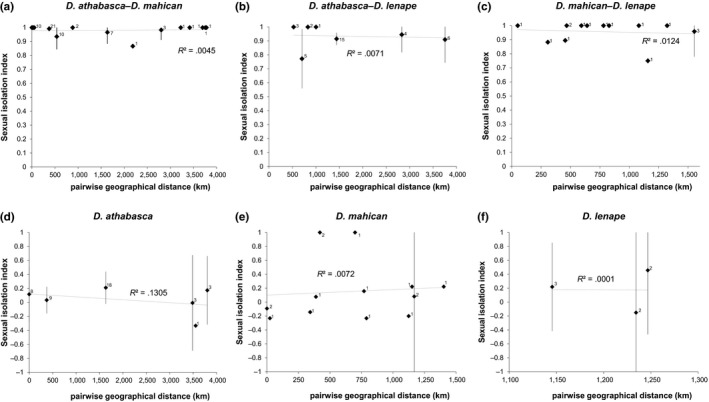 Sexual isolation between (panels: a–c) and within (panels: d–f) species: Drosophila athabasca ( WN ), D. mahican ( EA ), and D. lenape ( EB ). Sexual isolation indexes ( SI s) between pairwise comparisons are plotted as a function of geographical distance (km). For multiple comparisons made between the same pairwise localities, the mean SI is shown with error bars indicating 95% confidence intervals across replicates. The number of replicate tests per comparison is shown next to each data point. R 2 are shown for each plot (none of the relationships are significant). Results are based mostly on multiple‐choice and few no‐choice mating tests across multiple isofemale lines (see Table S2 and text)