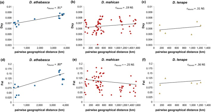Relationship between pairwise geographical distance (km) of conspecific populations ( x ‐axis) and average measures of sequence divergence ( y ‐axis) within each species: Drosophila athabasca ( WN , left panels, blue squares), D. mahican ( EA , center panels, red circles), and D. lenape ( EB , right panels, orange triangles). Top panels (a–c) show Dxy (absolute measure of sequence divergence), and bottom panels (d–f) show Fst (relative measure of sequence divergence). Both measures of genetic divergence are averaged across all gene fragments. Only populations with greater than six chromosomes are considered. Mantel tests were performed to determine the significance of each relationship with 1,000 permutation tests of matrix correlations between genetic divergence ( Dxy or Fst ) and geographical distance. Significant positive correlations reveal evidence of isolation by distance. Trendlines are shown only to help show patterns. Note the scale of y ‐axis