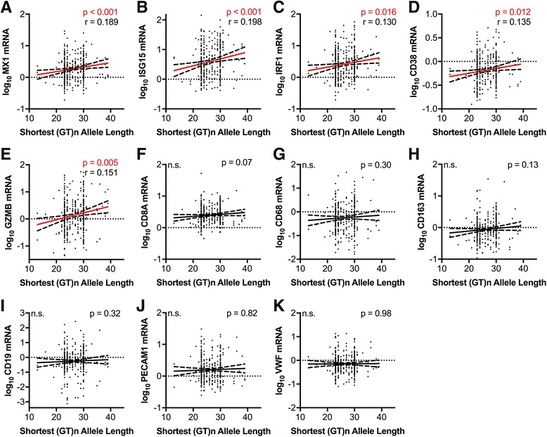 Length of the shortest HO-1 (GT)n allele correlates positively with CNS expression of markers of type I interferon responses and T-lymphocyte activation in HIV-infected individuals. Correlations were determined between the length of an HIV-infected (without HIVE) individuals shortest HO-1 (GT)n allele and the prefrontal cortex expression of the RNA markers a MX1, b ISG15, c IRF1, d CD38, e GZMB, f CD8A, g CD68, h CD163, i CD19, j PECAM1, and k VWF. Significant associations were determined by Spearman rank correlation. Solid lines represent best-fit linear regression models with dashed lines showing 95% confidence bands. Red regression lines denote significant differences. r , Spearman rank coefficient; n.s., not significant