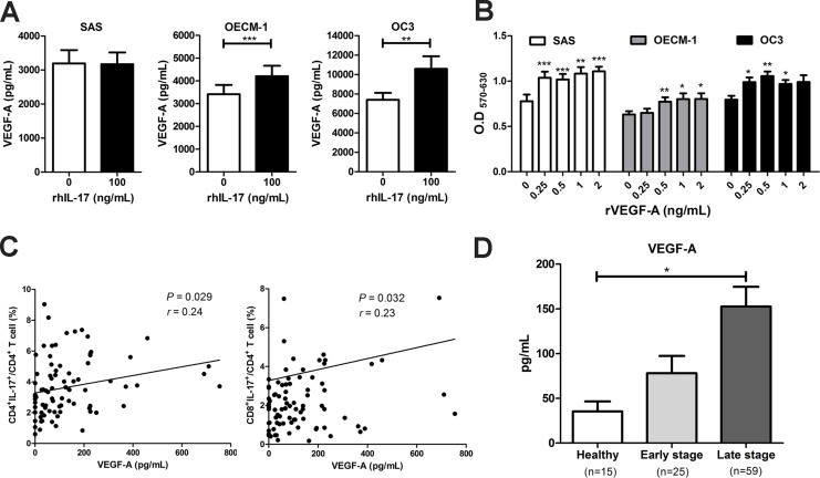 The high expression of IL-17-producing T cells was positively correlated with VEGF-A production in HNC and to facilitate OSCC cells proliferation ( A ) OSCC cells were cultured in the presence of 100 ng/mL rhIL-17 for 48 h and the VEGF-A content from culture supernatants were analyzed for by ELISA. ( B ) OSCC cells were treated with or without different concentrations of recombinant VEGF-A (0.25-2 ng/mL) for 48 h, and cell proliferation was determined by MTT assay. ( C ) Correlations between the level of IL-17-producing T cells (Th17 and Tc17) and plasma VEGF-A in HNC patients ( n = 84) were analyzed by Pearson correlation test. ( D ) The production of VEGF-A in plasma from HNC patients (early and late stage) and healthy donors were analyzed by ELISA. Data are representatives of at least three experiments and shown as the mean ± SEM.