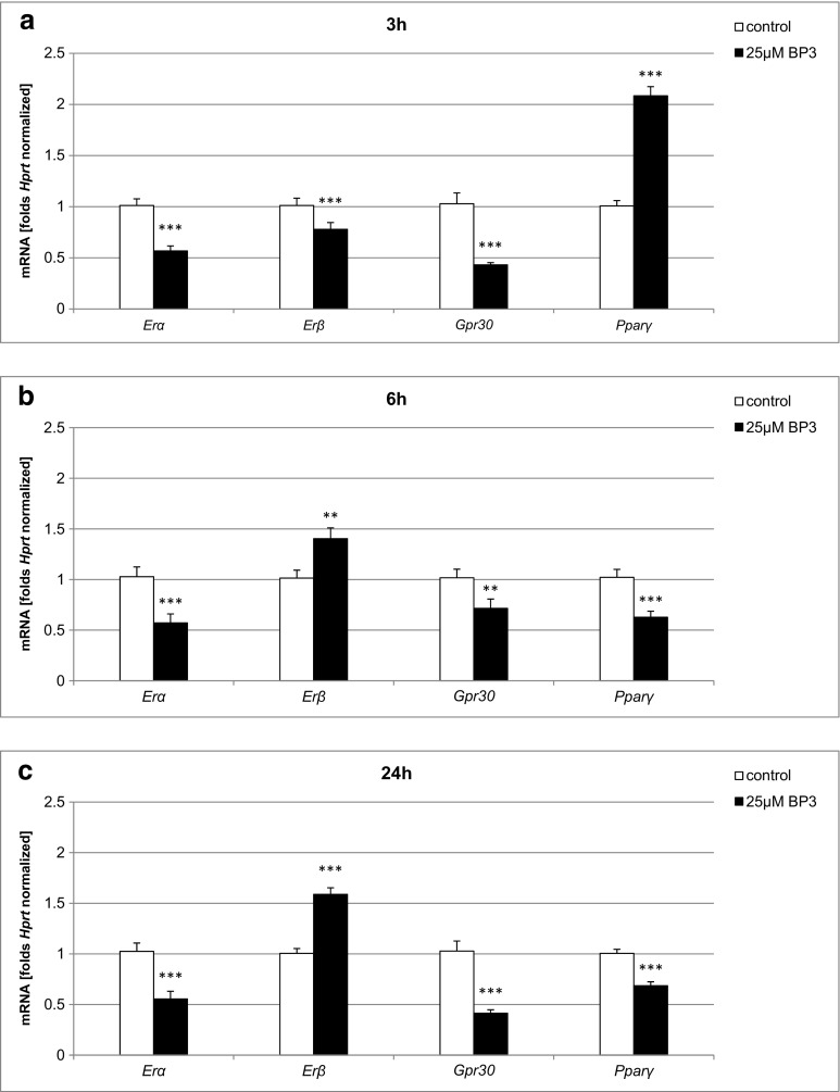 Effect of BP-3 (25 μM) on the mRNA expression levels of Erα , Erβ , Gpr30 , and Pparγ in neocortical cultures at 7 DIV. The extraction of total RNA at 3, 6, and 24 h post-treatment from the neocortical cells was followed by reverse transcription and quantitative polymerase chain reaction (qPCR). The products of the reverse transcription reaction were amplified using TaqMan probes and primers corresponding to the specific genes. Hprt was used as a reference gene. Each bar represents the mean ± SEM of three independent experiments. The number of replicates for each experiment ranged from 2 to 3, ** p