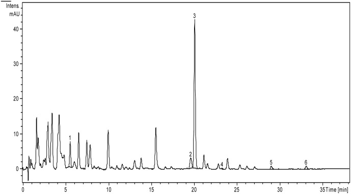 HPLC chromatogram of polyphenols from A. laxmannii aerial parts extract. The identified compounds: chlorogenic acid (1), isoquercitrin (2), rutin (3), quercitrin (4), luteolin (5), apigenin (6).