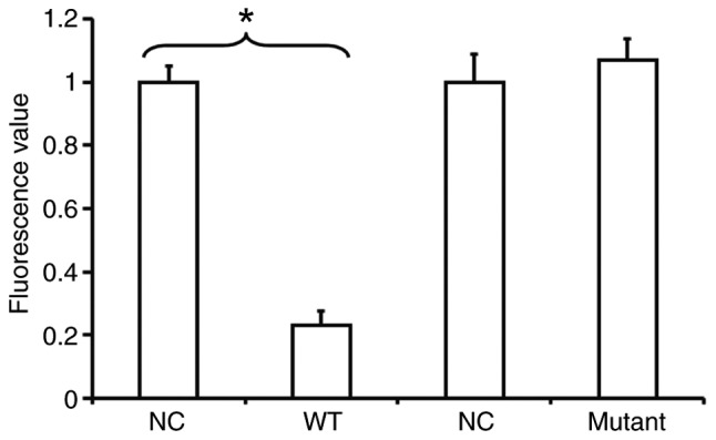 Identification of interaction between miR-215 and <t>MMP-16.</t> Results of the dual-luciferase reporter assay. Plasmids (0.5 µg) with WT or mutant 3′-untranslated region DNA sequences were co-transfected with miR-215 mimics into A549 cells. Following cultivation for 24 h, the cells were lysed using a dual-luciferase reporter assay kit and fluorescence intensity was measured using GloMax 20/20 luminometer. Using Renilla fluorescence activity as an internal reference, the fluorescence values of each group of cells were measured. *P