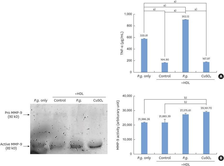 Proinflammatory activity by Porphyromonas gingivalis -induced oxidized HDL. (A) Monocytes incubated with Porphyromonas gingivalis in the presence of HDL produced significantly higher levels of TNF-α than monocytes treated with CuSO 4 or with HDL alone. (B) Monocytes incubated with Porphyromonas gingivalis and HDL showed higher MMP-9 activity than cells incubated with HDL alone. HDL: high-density lipoprotein, TNF-α: tumor necrosis factor alpha, MMP: matrix metalloproteinase, P.g. : Porphyromonas gingivalis , Control: sample without Porphyromonas gingivalis . a) Statistically significant ( P