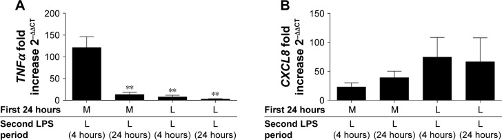 LPS tolerance results in the differential desensitization of TNFα and CXCL8 gene expression. COPD alveolar macrophages were cultured in media or LPS (1 μg/mL) for 24 hours before washing and restimulating with LPS (1 μg/mL) for further 4 or 24 hours as indicated. Cells were harvested in TRIzol and TNFα ( A ) and CXCL8 ( B ) gene expression was measured by qPCR and normalized to GAPDH levels (n=6). Data show mean ± SEM fold induction compared to non-stimulated time-matched controls. Paired t -tests were carried out to compare each condition to ML. ** p