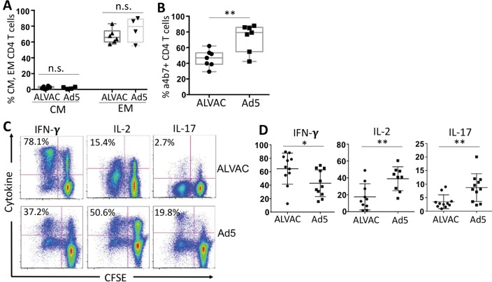Phenotypic characterization of ALVAC- and Ad5 vector-specific CD4 T cells. PBMC from RV144 or HVTN204 vaccine recipients were stained with CFSE and re-stimulated with vector for 6 days. Phenotypes and cytokine profile of CFSE-low, vector-specific CD4 T cells were measured by flow cytometry. (A) Comparison for percent of central memory (CM: CCR7+CD45RO+) and effector memory (EM: CCR7-CD45R)+) subsets in CFSE-low, ALVAC- and Ad5 vector-specific CD4 T cells; (B) Comparison for α4β7+% in CFSE-low, ALVAC- and Ad5 vector-specific CD4 T cells; (C) Representative flow cytometric plots for cytokine expression (IFN-γ, IL-2, and IL-17) in CFSE-low, ALVAC-specific (top) or Ad5 vector-specific (bottom) CD4 T cells; (D) Comparison for cytokine expression in CFSE-low, vector-specific CD4 T cells (% cytokine+ CFSE-low) between ALVAC and Ad5 vector from multiple vaccine recipients (n = 11). n.s.: not significant, *p ≤ 0.05, **p ≤ 0.01.