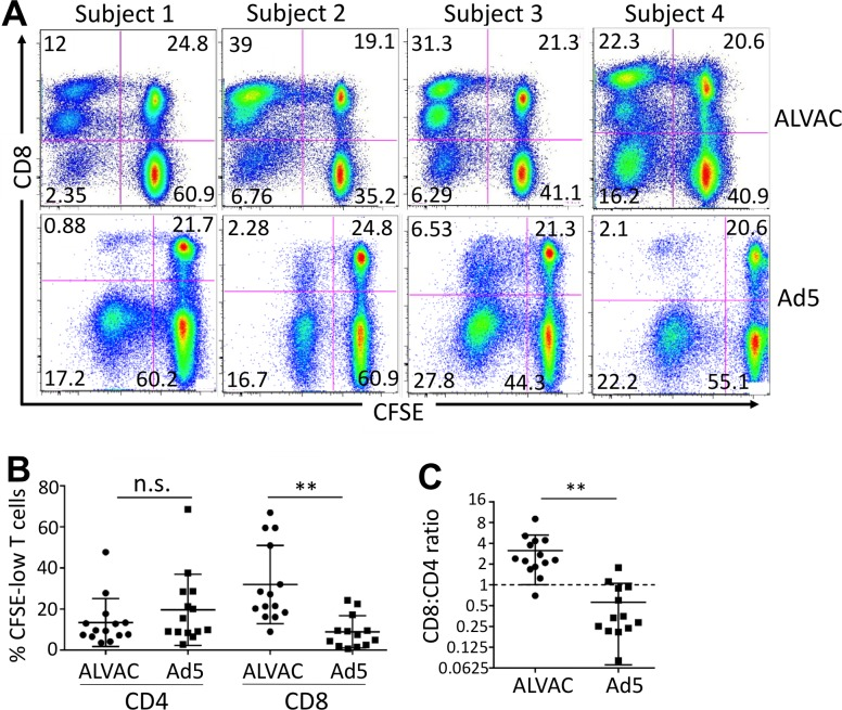 ALVAC elicits distinct profile of vector-specific CD8 vs. CD4 T-cell proliferative response compared to Ad5 vector. PBMC were stained with CFSE and re-stimulated with the corresponding vector for 6 days. (A) Representative flow cytometry plots for PBMC of multiple subjects showing vector-induced CD8 vs. CD4 T-cell proliferative responses in PBMC of RV144 (top) and HVTN204 (bottom) vaccine recipients. (B) Comparison for vector-specific CD8 and CD4 T-cell proliferative responses (% CFSE-low) in PBMC of RV144 and HVTN204 after corresponding vector stimulation. (C) Ratio of vector-specific CD8/CD4 T-cell proliferation in RV144 (ALVAC) and HVTN204 (Ad5) PBMC. Statistical analysis was performed using an unpaired Student's t test; n = 14. *p ≤ 0.05, **p ≤ 0.01, ***p ≤ 0.001.