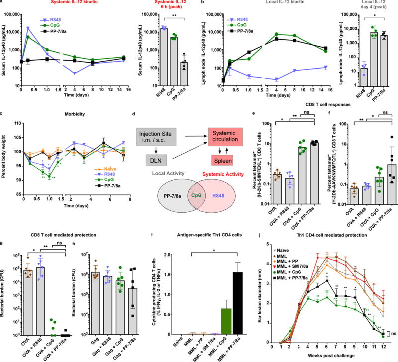 Persistent, locally restricted innate immune activation is necessary and sufficient for eliciting protective CD8 and Th1-type CD4 T cell responses (a–c) CpG ODN 1826 (3.1 nmoles, 20 μg), R848 (62.5 nmoles, 20 μg) or PP-7/8a (62.5 nmoles, 120 μg) were delivered subcutaneously into both hind footpads of C57BL/6 mice. (a) Supernatant of ex vivo cultured lymph node cell suspensions (n = 4) and (b) serum (n = 5) were assessed for IL-12p40 by ELISA at serial timepoints. (c) Percent body weight change (n = 3) following subcutaneous administration of different vaccine adjuvants (significance is shown for comparison with naïve; two-way ANOVA with Bonferroni correction). (d) Relationship between biodistribution and local and systemic innate immune activation. (e, f) C57BL/6 mice received subcutaneous administration of protein antigen (either 50 μg of OVA, or 20 μg of SIV Gag p41) formulated with adjuvant at days 0 and 14. At day 24, tetramer + CD8 T cell responses were assessed from whole blood by flow cytometry (n = 6). (g, h) Mice were challenged intravenously at day 28 with either (g) LM -OVA or (h) LM -Gag, and bacterial burden in spleens (n = 6) was evaluated on day 31 and 30, respectively. (i–l) C57BL/6 mice received subcutaneous immunizations of 20 μg of MML with or without adjuvant on days 0, 21 and 42. (i) Splenocytes were isolated on day 70 and stimulated in vitro with an MML peptide pool. CD4 T cells in the mixed splenocyte cultures were evaluated for Th1 characteristic cytokine (IFNγ, IL-2 and TNFα) production (n = 4). (j) Mice were challenged intradermally in both ears with L. major at day 70. Ear lesion diameters (n = 6) were measured for 12 weeks (significance is shown for comparison with protein alone). All data are representative of two or more independent experiments, except the Leishmania ear lesion kinetic is from a single study. Data on log scale are reported as geometric mean with 95% CI. Unless stated otherwise, comparison of multiple groups for statistical significance was determined using Kruskal-Wallis ANOVA with Dunn's post test; ns, not significant (P > 0.05); *, P
