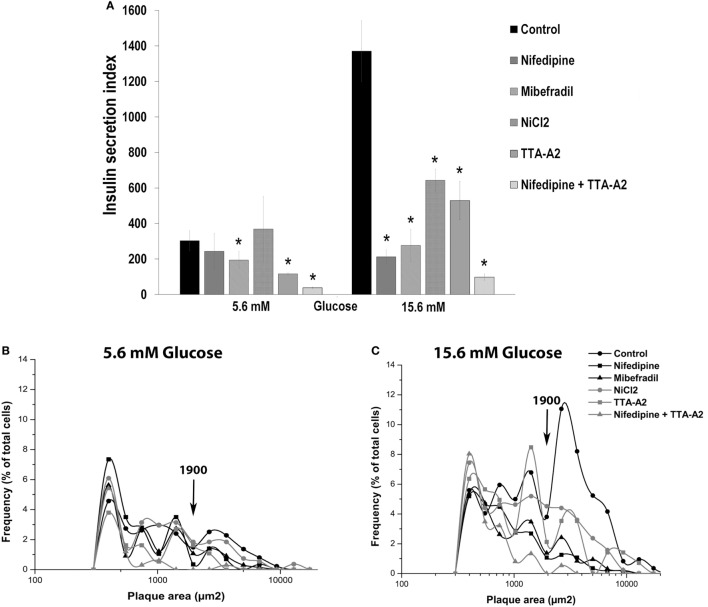 Effect of calcium channel inhibitors on basal and glucose-induced insulin secretion in adult beta cells. (A) Overall insulin secretory activity (insulin secretion index) of adult beta cells incubated with nifedipine (5 µM), mibefradil (1 µM), NiCl 2 (50 µM) and TTA-A 2 (50 µM), exposed at basal (5.6 mM glucose), and stimulating (15.6 mM glucose) conditions. Bars represent the mean ± SEM of three different experiments by duplicate. * p ≤ 0.05 denotes significant differences with respect to control cells at 5.6 and 15.5 mM glucose. Dunnet test (analysis of variance). (B,C) Frequency distribution of functional subpopulations of beta cells incubated with inhibitors of (A) observed in basal (B) and stimulating (C) glucose conditions.