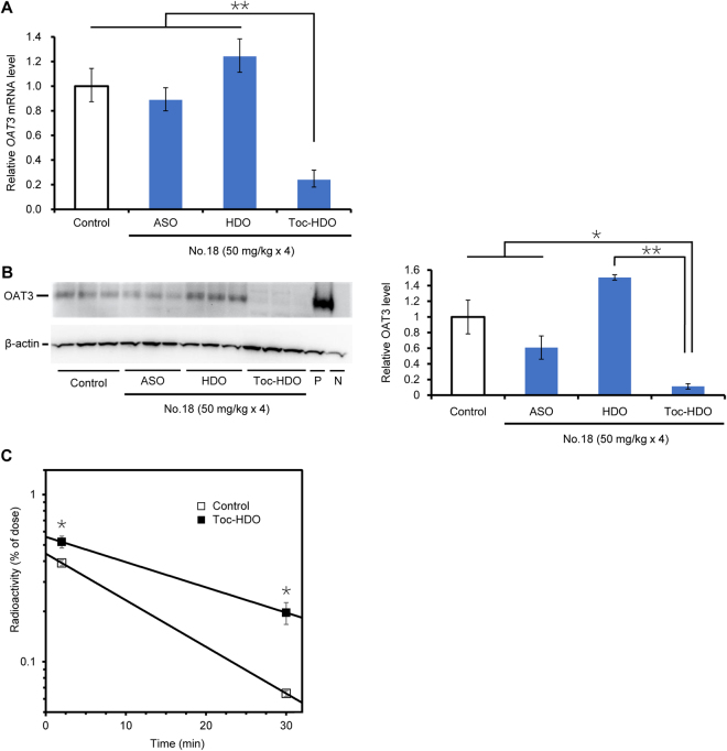Cumulative gene silencing effect by repeated administration of Toc-HDO. ( A ) OAT3 mRNA levels measured by quantitative RT-PCR in brain homogenates after four intravenous injections (at 1-week intervals) of 13-mer ASO, HDO, or Toc-HDO (No. 18) at doses corresponding to 50 mg/kg of ASO. Brains were obtained 72 h after the last injection. Data shown are relative to CD31 mRNA levels and are expressed as mean values ± s.e.m. ( N = 3, ** P