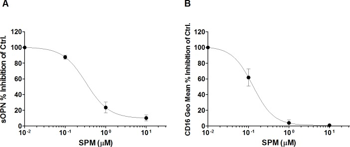 SPM reversed the MGBG inhibitory effects on sOPN and CD16 expression in monocytes. <t>PBMCs</t> were cultured for 3 days with or without treatment. Cells were cultured with 10 μM MGBG and various concentrations of SPM. (A). MGBG significantly decreased sOPN; SPM reversed the MGBG inhibitory effects on sOPN. The average sOPN level of 3 day untreated and 10 μM MGBG treated cells was 30 and 2 ng/ml, respectively. n = 6, means and SEM. (B). MGBG inhibited monocyte CD16 expression; SPM reversed the MGBG inhibitory effects on CD16 expression. Cultured PBMCs were double stained with <t>CD14</t> and CD16 antibodies for flow cytometry analysis. The average CD16 geometric mean in untreated and MGBG treated CD14+ monocytes were measured at 510 and 249, respectively. n = 3, means and SEM. Data was presented as a percentage of inhibition of MGMG treatment only.
