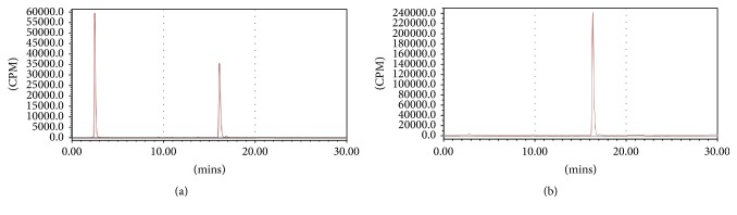 Radio-HPLC analysis of [ 18 F]AmBF 3 -TEG-ES ( t R = 16.3 min) before purification (a) and after C18 purification (b).