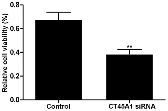 Viability of A549 cells transfected with CT45A1 siRNA and negative control was determined by an MTT assay. **P