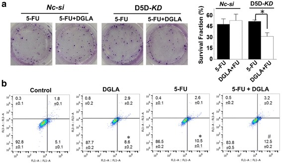D5D- KD and DGLA supplementation enhance the efficacy of 5-FU on growth of MDA-MB 231 cells. a Colony formation assay of D5D- KD MDA-MB 231 cells or control siRNA transfected cells at 10 days with treatment of 5-FU (10 μM) or 5-FU + DGLA (100 μM) for 48 h. Note, D5D- KD and NC-si control cells without DGLA and 5-FU treatment (shown in Fig. 2 ) were used to calculate survival fractions; and b Cell apoptosis was examined via flow cytometry after D5D- KD MDA-MB 231 cells were treated with DGLA (100 μM), 5-FU (10 μM), or 5-FU + DGLA for 48 h, followed by Annexin V-FITC/PI double staining. Data represent as mean ± standard deviation (*: significant difference vs. control with p