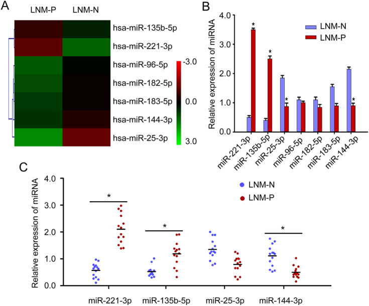 Identification of miR-221-3p as a metastasis-promoting miRNA in cervical cancer a The certified result of microarray analysis. Hierarchical clustering of seven significantly dysregulated miRNA expression profiles in human primary cervical cancer tissues derived from cervical cancer patients with or without lymph node metastasis. b Validation of the selected miRNAs predicted to be dysregulated in cervical cancer with or without lymph node metastasis using qRT-PCR in the same tissues used for microarray analysis. Data are shown from three independent experiments and presented as fold expression normalized to U6 ± SD (standard deviation). c qRT-PCR analysis of the relative tissue expression of miR-221-3p, miR-135b-5p, miR-25-3p, and miR-144-3p in additional 28 (LNM-N = 14; LNM-P = 14) cases of human CC tissues. Each sample was analyzed in triplicate and normalized to U6. * p