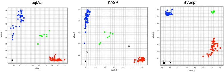 Allelic discrimination plots obtained for SNP103 using TaqMan, KASP and <t>rhAmp</t> <t>genotyping</t> assays on 96 samples. Red and blue dots represent the homozygous genotypes, the green circles represent heterozygous genotypes and the squares on the bottom left of the plot are no-template control