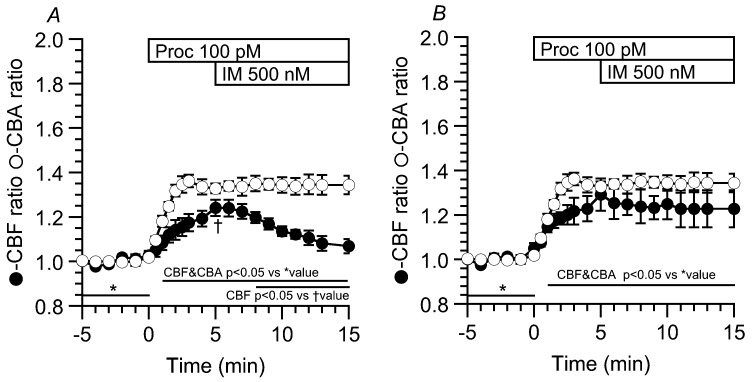 Effects of ionomycin (500 nM, IM) on CBF increase and CBA increase stimulated by procaterol (100 pM). The stimulation with 100 pM procaterol increased and sustained CBF and CBA by ~35%. The further addition of 500 nM IM decreased CBF (7/10 cells) or did not change CBF (3/10 cells), although it only sustained the CBA increase. ( A ) Cells were first stimulated with 100 pM procaterol for 5 min, and then, further with 500 nM IM. The addition of 500 nM IM decreased the CBF ratio gradually ( n = 4), but not CBA ( n = 3). The incidence was 7/10 cells; ( B ) The further addition of 500 nM IM did not change the CBF ratio ( n = 3), and also the CBA ratio ( n = 3). The incidence was 3/10 cells. * shows control values and † shows the values just before the addition of IM (A).
