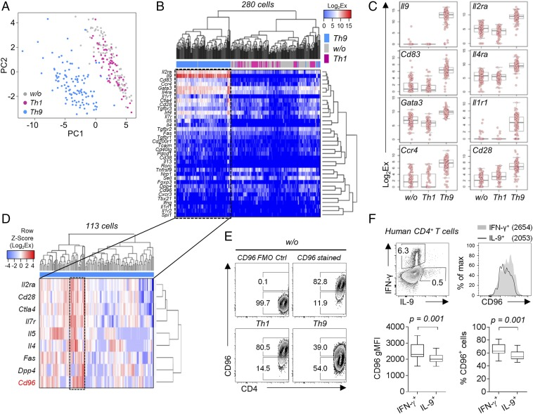 Single cell profiling identifies CD96 high and CD96 low subsets of Th9 cells. ( A – D ) Single cell gene expression analysis of CD44 + alloreactive T cells sorted from nonpolarized (w/o; n = 100), Th1 ( n = 67), and Th9 ( n = 113) polarized BALB/c cocultures. See Table S2 for a list of all genes measured. ( A ) Principal component analysis of gene expression in indicated Th subsets. ( B ) Nonsupervised hierarchical clustering analysis (Pearson's correlation) comparing gene expression in Th subsets. Analysis includes all genes with detectable expression. ( C ) Box plots of most differentially expressed genes. Bonferroni-corrected ANOVA P values: Il9 ( P = 1.4 × 10 −126 ), Il2ra ( P = 1.4 × 10 −65 ), Cd83 ( P = 7.1 × 10 −64 ), Il4ra ( P = 1.2 × 10 −52 ), Gata3 ( P = 3.6 × 10 −47 ), Il1r1 ( P = 5.5 × 10 −47 ), Ccr4 ( P = 2.2 × 10 −46 ), and Cd28 ( P = 2.3 × 10 −43 ). ( D ) Nonsupervised hierarchical clustering analysis (complete linkage method) of gene expression in CD44 + T cells sorted from alloreactive BALB/c Th9 cultures. Displayed genes contributed to clustering. Frame indicates a cluster of Th9 cells characterized by high Cd96 expression. ( E ) Contour plots of surface CD96 expression in CD44 + polarized alloreactive BALB/c T cells, including fluorescence minus one (FMO) staining control (Ctrl). ( F ) Comparison of CD96 expression levels in IL-9 + and IFN-γ + human <t>CD4</t> + T cells. <t>PBMCs</t> from blood of 10 healthy individuals were stimulated ex vivo with Staphylococcus enterotoxin B (SEB) for 24 h. A one-tailed Wilcoxon matched-pairs signed rank test was applied. gMFI, geometric mean fluorescence intensity.