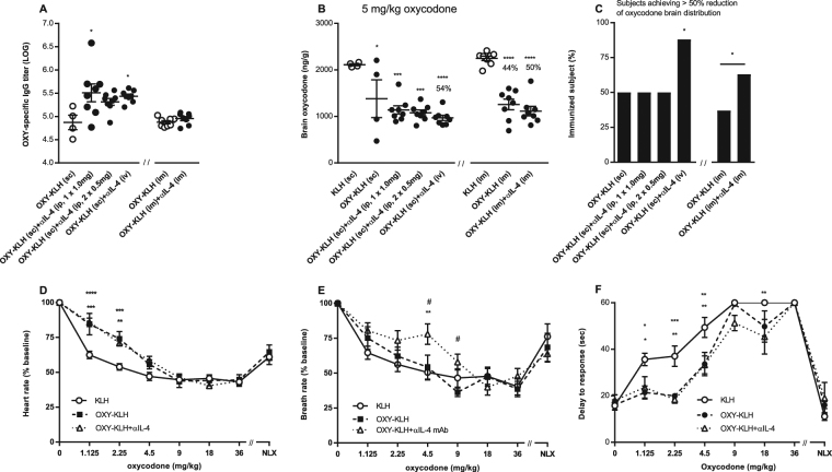 The lead formulation of OXY-KLH plus αIL-4 mAb is effective across clinically-relevant immunization regimens and attenuated oxycodone-induced physiological and behavioral effects. BALB/c mice were immunized with OXY-KLH or KLH on days 0, 14 and 28, and tested for vaccine efficacy a week after the third immunization. Mice received KLH or OXY-KLH s.c. or i.m., whereas αIL-4 mAb was administered i.p., i.v., or i.m. In a first cohort, mice were challenged with 5 mg/kg oxycodone: ( A ) oxycodone-specific IgG titers, ( B ) oxycodone brain concentrations, and ( C ) subjects that showed more than 50% reduction in oxycodone distribution to the brain compared to the KLH group. Data are from two independent experiments and expressed as mean ± SEM. Percentages (%) above bars indicate reduction compared to KLH. One-way ANOVA paired with Tukey's multiple comparisons test or unpairedtwo-tailed t-test. Chi-square test (χ 2 = 62.66, df = 6). *p