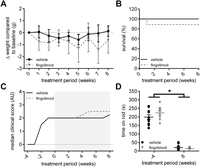 Effect of fingolimod treatment on disease progression. ( A ) Fingolimod (1 mg/kg bodyweight/day) and vehicle treated CD86 −/− NOD knockout mice showed no difference in weight progression over the course of the treatment. ( B ) Survival of mice did not differ between fingolimod and vehicle treated animals, although one animal in the fingolimod group died due to complications of the pump implantation. ( C ) Mice in both groups had a median clinical score of 2.0 at the start of treatment. Both fingolimod and vehicle treated mice showed a similar disease progression over the course of the 8-week treatment (indicated by gray shaded rectangle). ( D ) Locomotor function declined similarly between fingolimod and vehicle treated mice as disease and paralysis progressed. Statistical analysis: ( A ) 2-way ANOVA with Sidak post hoc test, ( B ) Kaplan-Meier analysis with Mantel-Cox test, ( D ) Kruskall-Wallis test with Dunn's method; group sizes: n = 10 (vehicle), n = 9–10 (fingolimod). *p ≤ 0.05, ns: not significant.