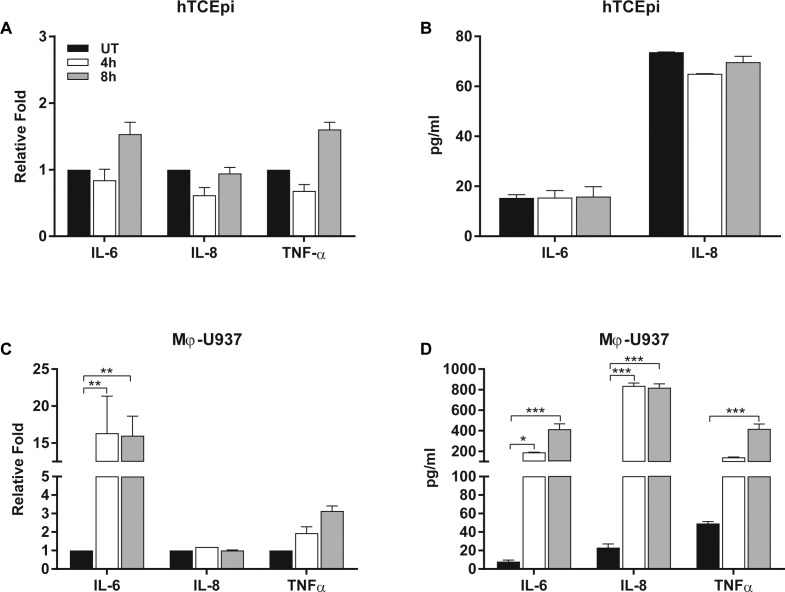 HMGB1 does not induce secretion of inflammatory cytokines in HCEC. hTCEpi (A, B) and macrophage-differentiated U937 (Mϕ-U937) cells (C, D) were stimulated with HMGB1 (10 μg/mL) for 4 or 8 hours. mRNA expression (left graphs) and secreted IL-6, IL-8, and TNFα (right graphs) were measured by qPCR and ELISA, respectively. Graphs represent mean ± SEM of n = 2 (Mϕ-U937) and n = 4 (HTCEpi) independent experiments. ANOVA was used to test for statistical significance with Bonferroni's test for multiple comparisons. ***P ≤ 0.0001; **P ≤ 0.001; *P ≤ 0.01.