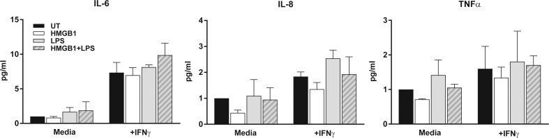 IFNγ does not improve HCEC responsiveness to LPS or HMGB1. Primary HCEC were stimulated with IFNγ (200 U/mL) prior to treatment with HMGB1, LPS, or both for 8 hours. Cell lysates were collected for RNA extraction and qPCR determination of relative IL-6, IL-8, and TNFα mRNA expression. Graphs represent mean ± SEM of n = 2 independent experiments.