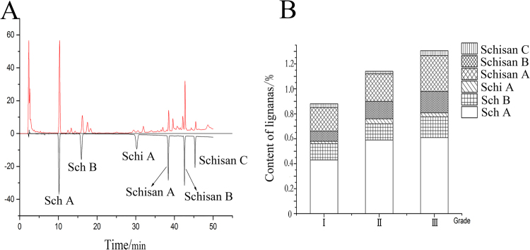 HPLC chromatogram of SCF, the above one was sample solution, and the below one was mixed references solution ( A ). Content of lignans in different part of SCF ( B ). (This image was created by Dr. Zhou).