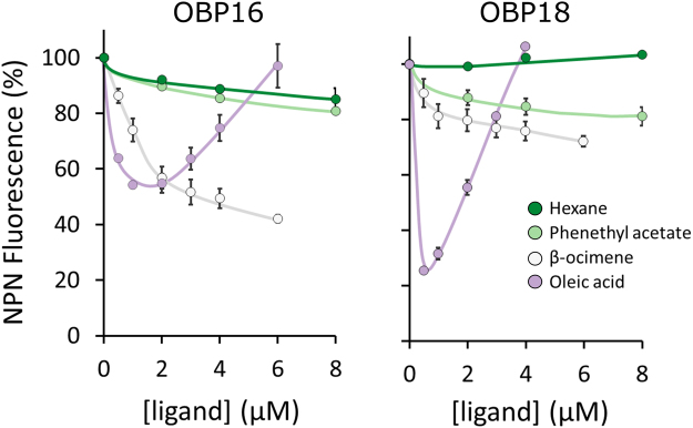 Affinity curves for OBP16 and OBP18. We used an NPN (N-Phenyl-1-naphthylamine) competitive binding assay to measure affinities of β-ocimene, oleic acid, phenethyl acetate, and hexane (negative control). Assays were performed in technical duplicate with 2 µM protein and 2 µM NPN in all cases. Lower NPN fluorescence intensity indicates stronger ligand binding. The high NPN fluorescence intensity for the high oleic acid concentrations is due to the formation of micelles at higher concentrations of the ligands 54 , 55 . A 1% solution of β-ocimene, oleic acid, phenethyl acetate, and hexane corresponds to approximately 60 mM, 32 mM, and 63 mM, and 76 mM, respectively. Error bars are standard error of the mean.