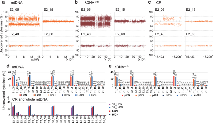 Analysis of methylation status of mtDNA by next-generation bisulfite sequencing. ( a – c ) Cytosine unconversion rates at cytosine sites with coverage of ≥10 in whole mtDNA of an ESC mtNA preparation (E2) ( a ), λDNA −mC mixed as an internal control ( b ) and the control region (CR) of the mtDNA ( c ) are plotted according to nucleotide numbers (X axis) from 1 to 16,299 for mtDNA, from 1 to 48,502 for λDNA −mC and from15,423 to 16,034 for the CR, and unconversion rates in percentages (Y axis). Nucleotide positions on X axes are shown below graph fields. Plots for L strands of mtDNA and plus strands of λDNA −mC are shown above X axes with percentages of unconversion increasing upwards, and H strands and minus strands below X axes downwards. Graphs with higher resolution are shown in Supplementary Fig. S3 . ( d,e ) Average unconversion rates of cytosines with coverage of ≥10 in whole mtDNA and λDNA −mC . For each sample shown are average unconversion rates of all cytosines in CN (N = A, G, C and T), CG and non-CG sequences in L strands and H strands of whole mtDNA (L/CN, L/CG, L/CH, H/CN, H/CG and H/CH, respectively) ( d ) and in plus strands and minus strands of λDNA −mC (p/CN, p/CG, p/CH, m/CN, m/CG and m/CH, respectively) ( e ). Percentages of unconverted cytosines in L/CN, H/CN, p/CN and m/CN are shown above the bars. ( f ) Comparisons of average unconversion rates of cytosines with coverage of ≥10 in L strands and H strands of the CR of mtDNA and whole mtDNA (CR_L/CN, CR_H/CN, L/CN and H/CN, respectively). Sample names are presented as in Fig. 2 .