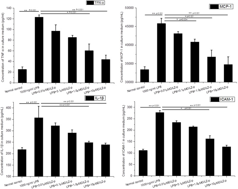 The synthesized GILZ-p decreased LPS induced inflammatory cytokine secretion in culture medium of Müller cells. The Enzyme-Linked <t>Immunosorbent</t> Assays (ELISA) were performed to determine the protein expression levels of IL-1β, MCP-1, TNF-α, and ICAM-1 in Müller cells treated with 1000 ng/ml LPS in combination with different concentrations of GILZ-p (0.01, 0.1, 1, and 10 μM) for 24 h. Data represent the mean ± SE; the Mann–Whitney U -test was used for comparisons between two groups. n = 6 for each group. ∗ P