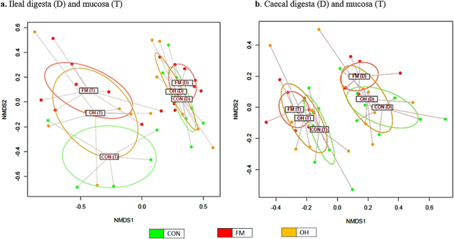 Non-metric multidimensional scaling (nMDS) ordination plot, illustrating beta biodiversity differences of bacterial community compositions in the caecal digesta (D) and mucosa-associated microbiota (T) of pigs fed control (CON), flaxseed meal (FM) and oat hulls (OH) diets. The PERMANOVA analyses of unweighted UniFrac distances revealed distinct clustering patterns between the ileal digesta microbiota of CON and FM ( P = 0.010), and FM and OH diets-fed pigs ( P = 0.005). The PERMANOVA analysis of unweighted UniFrac distances also revealed distinctions between caecal mucosa-associated microbiota of the CON and FM-diets fed pigs ( P = 0.030), and ileal mucosa-associated microbiota of the FM and OH-diets fed pigs ( P = 0.041).