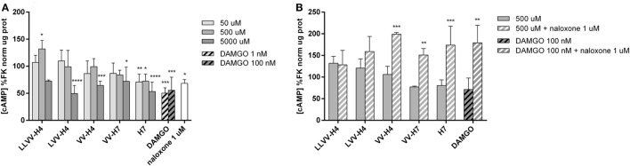 Determination of intracellular cAMP in forskolin (FK)-stimulated Caco-2 cells after incubation with the five hemorphins. (A) The ability of the hemorphins/opioid peptides to act on the cAMP pathway was evaluated in vitro . Caco-2 cells were incubated with or without increasing concentrations of each hemorphin, DAMGO, a known specific OP agonist and naloxone, a known OP antagonist, in FK-supplemented medium for 15 min at 37°C. Intracellular cAMP levels were determined by ELISA, normalized by the total protein concentration and expressed as a percentage of the reference group FK. Data presented are mean ± SD (average of two assays performed in triplicate; n = 6). *Statistically different from control; * p