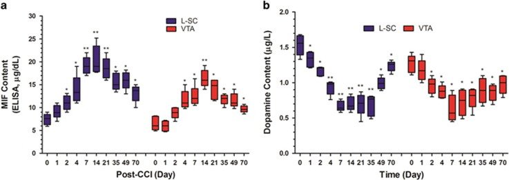 Migration inhibitory factor (MIF) and dopamine content in L-SC and VTA in CCI mice over the 70-day observation period. MIF and dopamine content in microdialysate obtained from L-SC and VTA were detected with ELISA and HPLC, respectively, on days 0, 1, 2, 4, 7, 14, 21, 35, 49 and 70 post CCI. Time-dependent MIF content upregulation in L-SC and VTA, as well as inversed dopamine content downregulation, are shown in a and b (* P