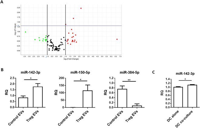 Murine CD4 + CD25 + Treg EVs contain different miRNA compared to control T cell EVs. ( A) dTreg and control FoxP3 - T cell EVs (n = 3 per group) isolated by ExoQuick-TC were lysed and total RNA was purified and assessed using NanoDrop™ spectrophotometer and Agilent 2100 Bioanalyser. EVs miRNA was reverse transcribed into cDNA and pre-amplified before miRNA detection using QuantStudio™ 12 K Flex Real-Time PCR System with the OpenArray® Platform. The volcano plot shows the relation between the p-value and the log fold change between FoxP3 − T cell and Treg EV miRNA expression levels. The blue line indicates the inverse log 10 of the p-value = 0.05. ( B ) Bar graphs (mean + SEM) showing the relative quantity of miR-142-3p, miR-150-5p, and miR-384-5p by control T cell EVs (Control EVs) and Treg EVs (Treg EVs) as measured by qPCR and normalised relative to RNU6-2. Data pooled from 3 individual experiments that were performed in triplicates. Statistical significance was determined using a two-tailed Student's t-test where *p