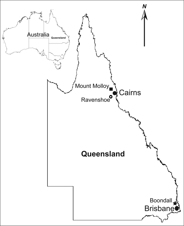 Map of state of Queensland with a map of Australia, indicating type localities of Lophoturus queenslandicus Verhoeff, 1924 (⚪) and other two new Lophoturus species: L. boondallus sp. n. found in Boondall (★), Brisbane and L. molloyensis sp. n found in Mount Molloy (⬛), Cairns region, Queensland, Australia. (Not in scale)