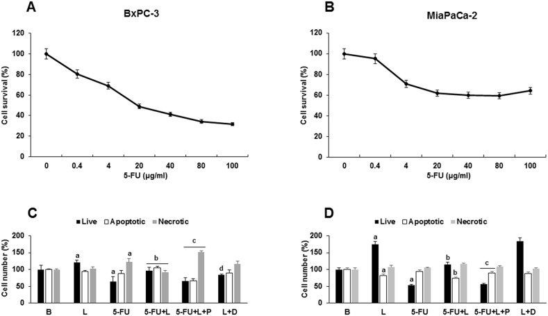 Leptin- induced survival of 5-FU treated- tumorspheres involves ABCC proteins Effects of 5-FU on survival of (A) BxPC-3 and (B) MiaPaCa-2 tumorspheres. Effects of 5-FU, leptin, DAPT and Probenecid on survival of (C) BxPC-3 and (D) MiaPaCa-2 cells forming tumorspheres. Cell numbers (live, apoptotic and necrotic) were determined after 1-2 days of treatment. PC tumorspheres were cultured (20,000 cells/well) in 6 wells low attachment plates in Mammocult medium containing 5-FU (20 μg/ml), leptin (L; 1.2 nM), IONP-LPrA2 (I; 0.0036 pM), DAPT (D, γ-secretase inhibitor; 20 μM) and Probenecid (P, ABCC inhibitor; 2 mmol/ml) for one week. Untreated cells were used as control (Basal, B). Apoptosis was determined via Annexin V assay. Effects of treatment on cell number were expressed as % of control for live, apoptotic and necrotic cells in basal conditions. Experiments were repeated three times. a: p≤0.05 compared to control; b: p≤0.05 compared to 5-FU; c: p≤0.05 compared to 5-FU+L; d: p≤0.05 compared to L.