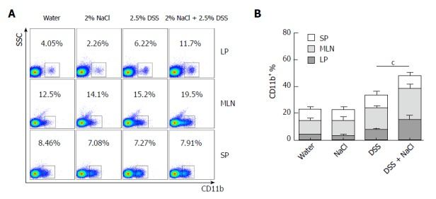 CD11b + macrophages are increased in DSS- and NaCl-treated mice. A: The CD11b + cells in LP, MLN and SP from the four groups were detected by flow cytometry; B: Quantification of the flow cytometry data indicates the CD11b + cell distribution in LP, MLN and SP. In the panels, data indicate three separate experiments, whereby 3 mice per group were used in each experiment. a P