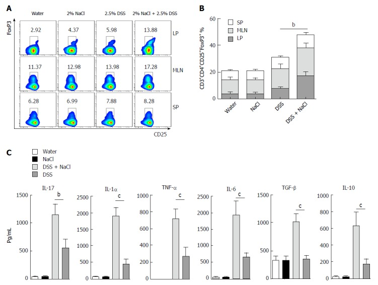 CD3 + CD4 + CD25 + Foxp3 + T cells are increased in mice treated with DSS and NaCl. A: CD3 + CD4 + CD25 + Foxp3 + T cells in LP, MLN and SP from animal models were detected by flow cytometry; B: A summary of the percentages of CD3 + CD4 + CD25 + Foxp3 + T cell distribution in LP, MLN and SP; C: LPMCs from the four groups were isolated and cultured for 24 h, and the levels of cytokines in the culture supernatants were collected and analyzed by enzyme-linked immunosorbent assay. In all the panels, data indicate three separate experiments, whereby 3 mice per group were used in each experiment. a P