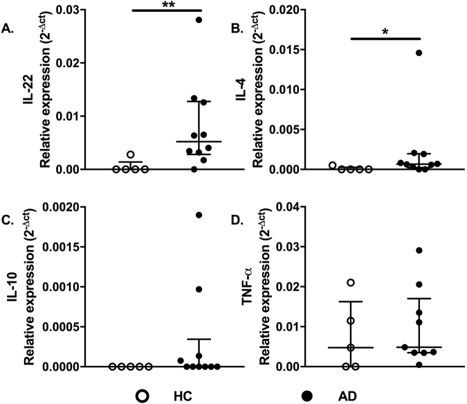 Cytokine gene expression profiles in AD skin. Expression profiles of IL-22, IL-4, IL-10, and TNF-α in skin of the healthy control group (HC, n = 5) compared with AD patients (AD, n = 10), assessed by real-time PCR. Lines represent medians with interquartile ranges of cytokines in skin specimens. *p ≤ 0.05 and **p ≤ 0.01.