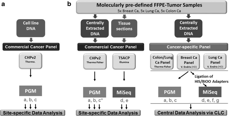 Multicenter study design for targeted NGS. a A commercial gene panel (Cancer Hotspot panel 2, CHPv2, Thermo Fisher Scientific) was applied to DNA from the LoVo cell line at four distinct dilutions at three PGM™ sequencing sites (a, b, and c) to demonstrate exemplarily sensitivity. Bioinformatics was performed locally. b Genomic DNA from 15 molecularly pre-characterized tumor samples (five breast, five lung, and five colon cancer cases) was analyzed with commercially available and custom-designed cancer gene panels on PGM™ and MiSeq™ benchtop sequencers at seven sequencing sites (a, b, c, d, e, f, and g). FFPE tissue sections of the very same tumor samples were delivered to the sites a, b, d, and e for local microdissection, DNA Isolation, QC/quantification, and commercial panel sequencing. Partner site c did not receive tissue sections for local DNA extraction and applied only centrally extracted DNA to commercial (c*) and cancer-specific gene panel sequencing (c). Bioinformatics of commercial cancer panel-based data was performed individually whereas cancer-specific panel-based data were collected centrally and compiled