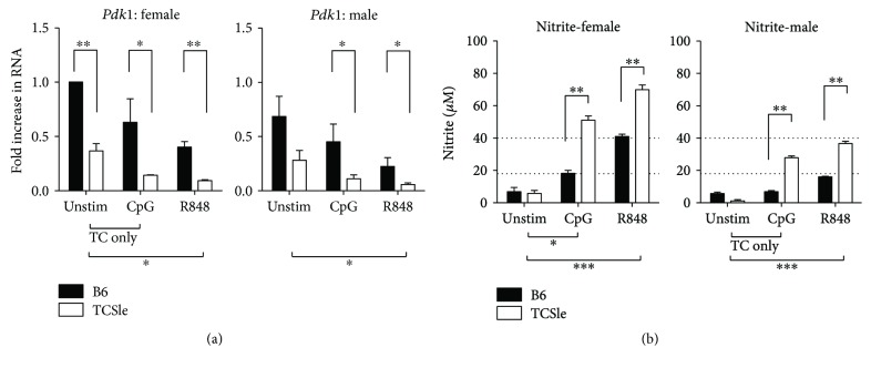 Female and male TCSle cDCs have a higher immunometabolism. Bone marrow-derived cDCs from B6 and TCSle female and male mice were cultured in standard conditions. On day 7, cDCs were stimulated with CpG (10 μ g/mL) or R848 (1 μ g/mL). cDCs were harvested 6 hours post stimulation for qRT-PCR analysis. Pdk1 was normalized to the housekeeping gene cyclophilin (a). Standard female unstimulated B6 condition was set to 1 in each experiment. Supernatants were harvested at the 24-hour time point and analyzed using the Griess reaction to measure nitrites (b). Dotted lines at 18 and 40 represent female B6 levels after CpG and R848 stimulation. Mean + SE values are from 3 independent experiments, using one mouse of each strain and sex per experiment (a, b). Two-way ANOVA analysis with Tukey multiple comparisons was used to determine significant activation by CpG or R848 within each group of mice represented by brackets and ∗ below the graph. Two-way ANOVA analysis with Tukey multiple comparisons, used to compare differences between B6 and TCSle, is represented by brackets and ∗ above the bars. ∗ p