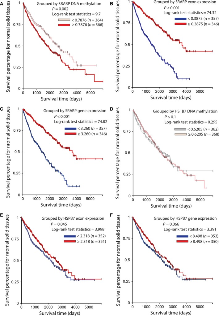 Association of SRARP and HSPB7 methylation and expression with survival in normal solid tissues using TCGA Pan‐Cancer datasets. Survival analysis was performed using Kaplan–Meier curves and the log‐rank test to estimate the survival probability. (A) Survival analysis based on SRARP DNA methylation levels in TCGA normal solid tissues. (B) Survival analysis based on SRARP exon expression in TCGA normal solid tissues. (C) Survival analysis based on SRARP gene expression in TCGA normal solid tissues. (D) Survival analysis based on HSPB7 DNA methylation levels in TCGA normal solid tissues. (E) Survival analysis based on HSPB7 exon expression in TCGA normal solid tissues. (F) Survival analysis based on HSPB7 gene expression in TCGA normal solid tissues.