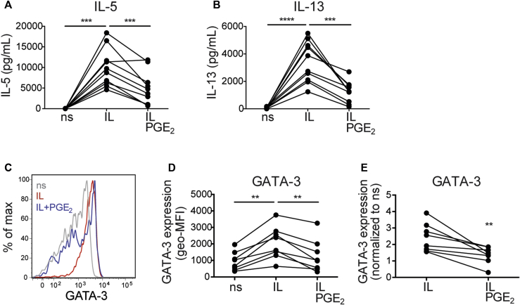 PGE 2 reduces GATA-3 upregulation. ILC2s were stimulated as indicated for 72 hours. A and B, Concentrations of IL-5 (Fig 3, A ) and IL-13 (Fig 3, B ) in ILC2 supernatants were determined by means of ELISA, and data are shown as individual concentrations (n = 10). *** P
