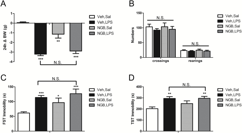 Dopamine receptor D3 (D3R) antagonist <t>NGB</t> 2904 treatment alone induced depressive-like behavior. (A) NGB 2904 treatment alone resulted in a lower body weight than in the vehicle group 24 h after treatment. (B) NGB 2904 treatment alone did not affect the locomotor activity. (C) NGB 2904 treatment alone induced an increase in the immobility time in the forced swim test (FST). (D) NGB 2904 treatment alone failed to affect immobility time in the tail suspension test (TST). The data are presented as the mean ± SEM. * P