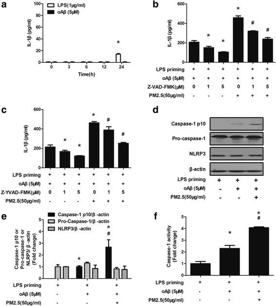 PM2.5-induced IL-1β production in oAβ-stimulated microglia is possibly dependent on NLRP3 inflammasome activation. Microglia were stimulated by LPS or oAβ alone for varying time, and the concentration of IL-1β in the culture supernatant was measured by ELISA ( a ). Microglia primed with LPS for 3 h were washed with fresh serum-free DMEM. LPS-primed microglia were stimulated with oAβ for 12 h and treated with pan-caspase inhibitor Z-VAD-FMK ( b ) or caspase-1 inhibitor Z-YVAD-FMK ( c ) for 30 min before PM2.5 exposure. After PM2.5 exposure for 4 h, IL-1β concentration in the culture supernatant was measured by ELISA. All figures are representative of three independent experiments, performed in triplicate. * P