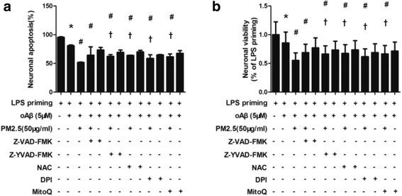 ROS and NLRP3 inflammasome activation is required for PM2.5-induced neuronal injury in neurons-microglia co-cultures. In a transwell co-culture system, neurons-microglia co-cultures were stimulated with oAβ for 12 h. Then, the co-cultures were treated with ROS inhibitors and caspase-1 inhibitors for 30 min before PM2.5 exposure for 4 h. Z-VAD-FMK, Z-YVAD-FMK, NAC, DPI, and MitoQ were included. a Apoptosis of co-cultured neurons were evaluated by flow cytometry with annexin V/PI staining. b Cell viability of co-cultured neurons were assessed via MTT assay. All figures are representative of three independent experiments, performed in triplicate. * P