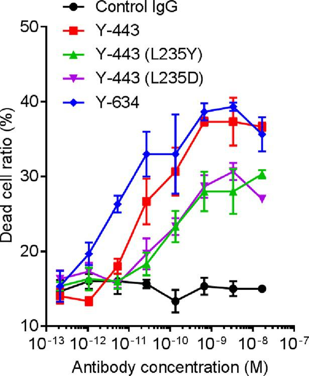 <t>ADCC</t> of Y-443 and Fc-mutated antibodies against MDA-MB-231 cells. MDA-MB-231 cells pre-labeled with Calcein AM were incubated with different concentrations of Y-443 or the Fc mutants, followed by addition of <t>PBMC</t> effector cells at a ratio of 1:50. The cell mixture was incubated for 4 hours at 37°C, and Calcein AM intensity in cells was detected by Acumen eX3 (TTP labtech). The results are the mean ± S.D. of dead cell ratio.