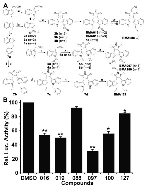 Synthesis of BMA analogues and their effects on STAT3-dependent luciferase activity (A) Synthesis of BMA analogues. a. NaH, CH 3 CH 2 I, THF: 1 95% yield; b. NaH, Br(CH 2 ) n CN, MeCN: 2a 94% yield, 3a 57% yield, 4a 83% yield; c. (i) (COCl) 2 , CH 2 Cl 2 , (ii) (CH 3 CH 2 ) 3 N, CH 2 Cl 2 : 2b 23% yield, 3b 45% yield, 4b 51% yield, 5b 44% yield, 6b 32% yield, 7b 39% yield; d. HMDS, MeOH, DMF: BMA016 95% yield, BMA019 98% yield, 4c 95% yield, BMA097 91% yield, BMA100 90% yield, 7c 90% yield; e. 37% HCHO, NaHCO 3 , 85°C: BMA088 96% yield, : BMA127 95% yiled; f. NaH, Br(CH 2 ) n CN, THF: 5a 30% yield, 6a 83% yiled; g. NaH, C 6 H 5 CH 2 Br, DMF: 7a 99% yiled; h. O 2 , DMSO, t -BuOK, THF: 7d 89% yiled. (B) Effect of BMA analogues on STAT3-dependent luciferase activity. Stable MDA-MB-231 cells expressing STAT3-dependent luciferase reporter were treated with synthetic BMA analogues or DMSO control followed by determination of luciferase activity.
