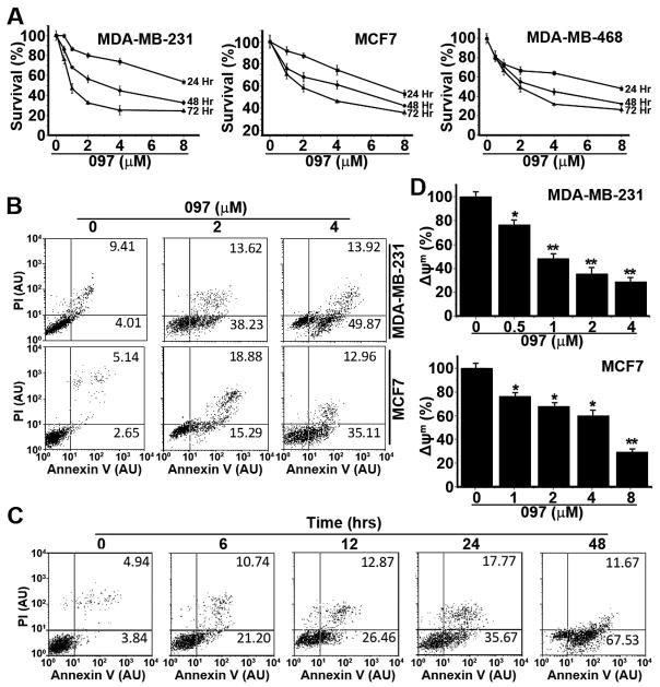<t>BMA097</t> inhibits proliferation and induces apoptosis in breast cancer cells (A) Survival assay. Human breast cancer cells were treated with BMA097 at different concentrations for various times followed by MTT assay. (B–D) Apoptosis assay. Human breast cancer cells were treated with BMA097 at different concentrations (B and D) or at 2 μM for different times (C) followed by Annexin V/PI (B–C) or JC-1 staining (D) and FACS analysis of apoptosis and mitochondrial membrane potential (Δψ m ). (* p